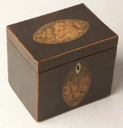 A single compartment harewood tea caddy edged with boxwood and inlaid with oval marquetry medallions depicting a conch shell to the top and holly leaves  to the front. Circa 1790.