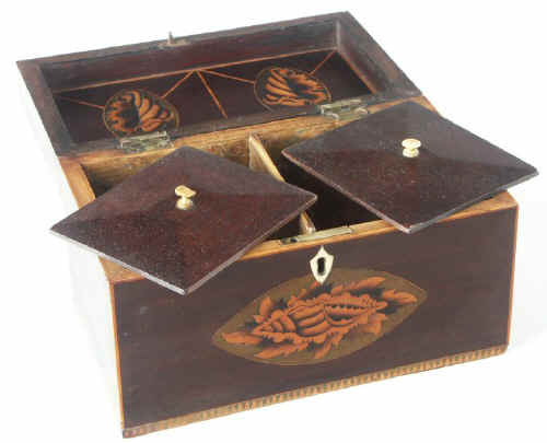 Mahogany Tea Caddy with Conch Shell inlays Circa 1790 tcmashells02.jpg (68641 bytes)